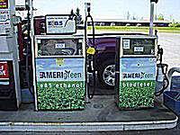E85 and biodiesel fuel pumps