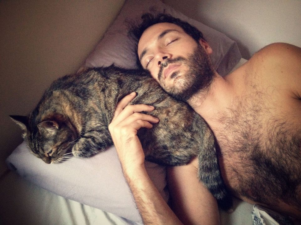 Photo of Cat Sleeping on Pillow With Man