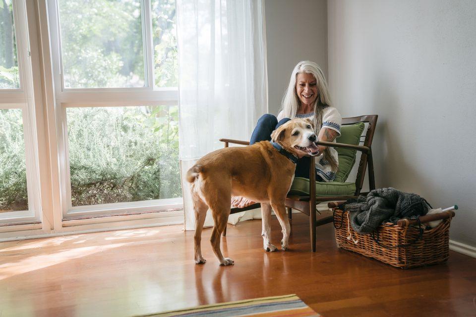 Woman and senior dog at home