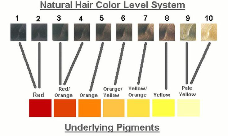 Chart Of Underlying Pigments
