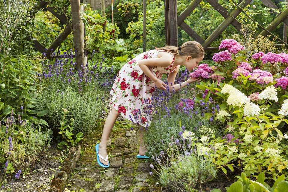 Girl smells hortentia flower in garden
