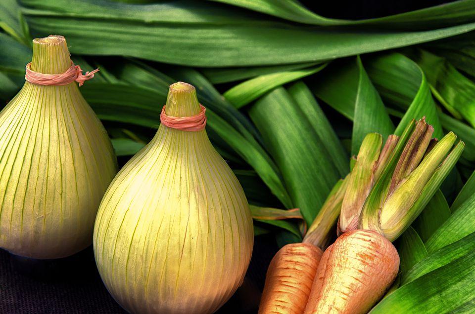 carrots onions and leeks