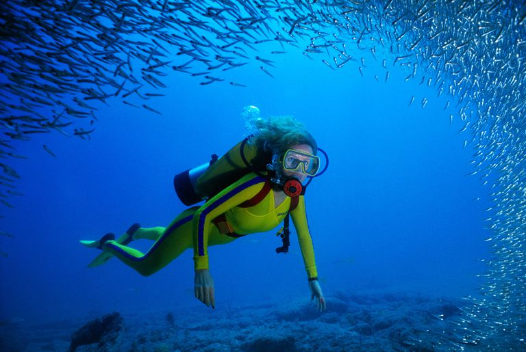 Scuba diving woman swims through a school of fish.