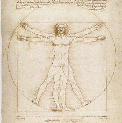 Vitruvian Man by Leonardo