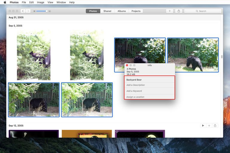 Photos app with Info window open to change image titles