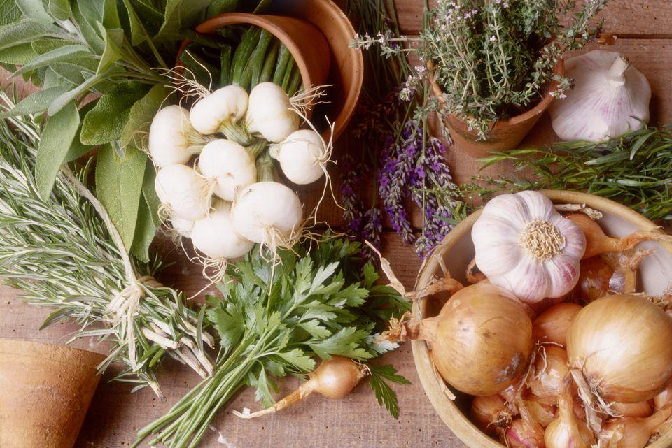 Onion herbs