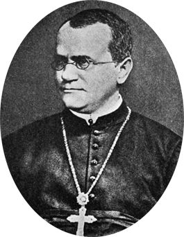 Mendel is the Father of Genetics