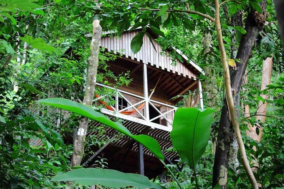 Jungle Bay treehouse