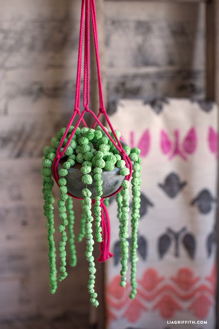 paper clay string of pearl plant