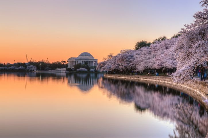 Jefferson Memorial Sunrise
