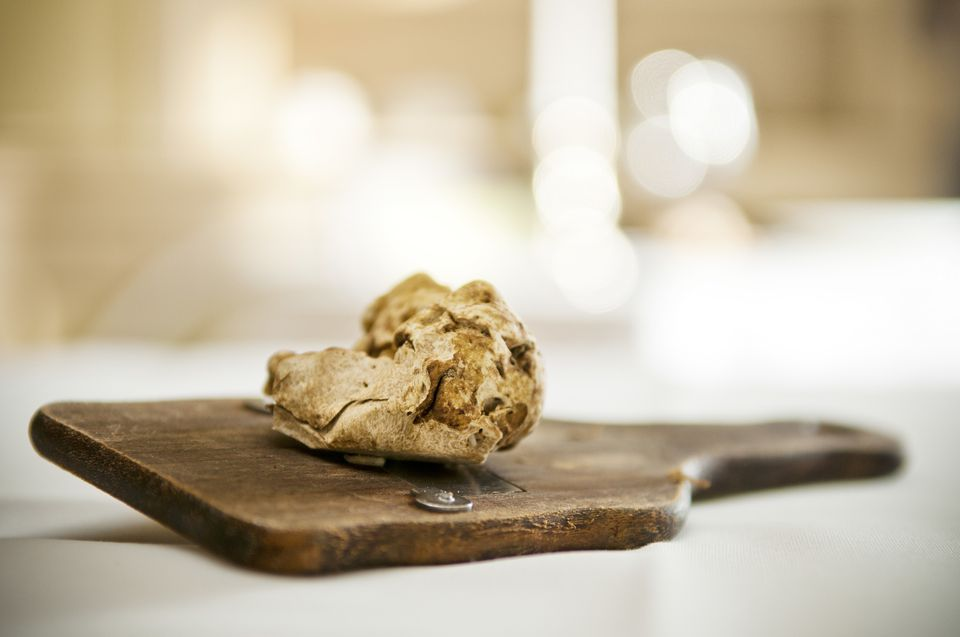 White truffles on a truffle grater