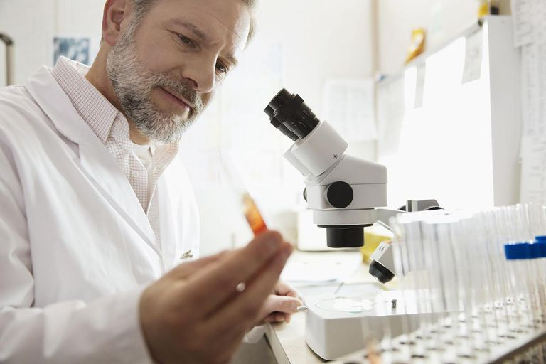 Mature male technologist examining sample in test tube