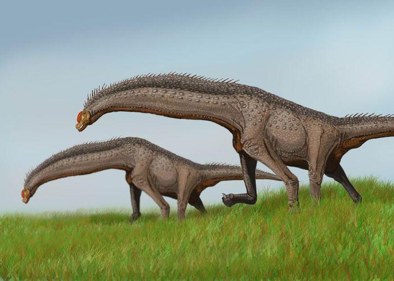 isisaurus
