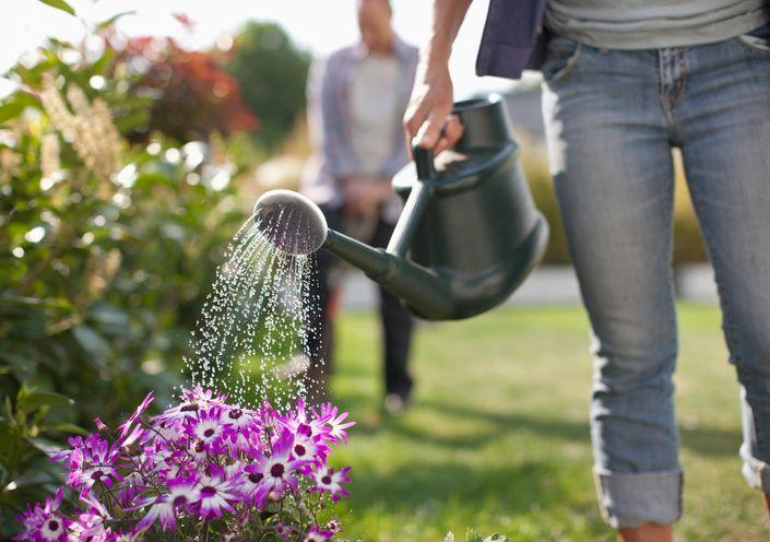 best-fertilizers