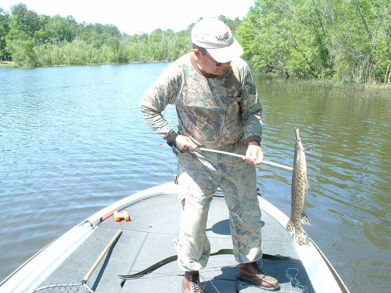 Wm. Hovie Smith shot this gar at Lake Eufaula