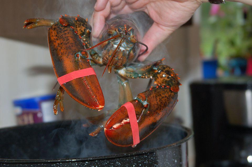 Parboil Lobsters Before Grilling