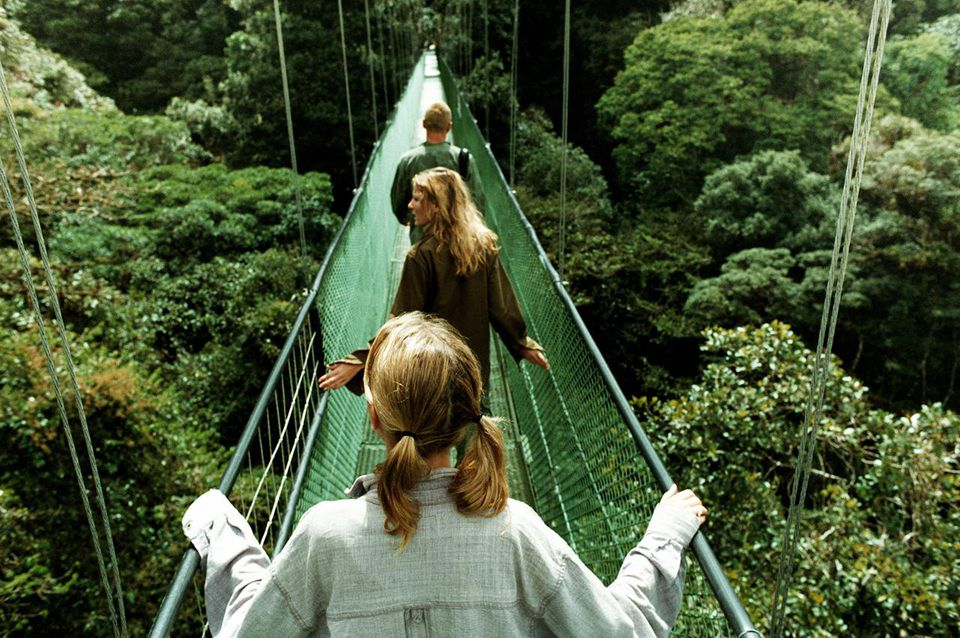 Costa Rica, Monteverde Cloud Forest, three people on 'sky walk'