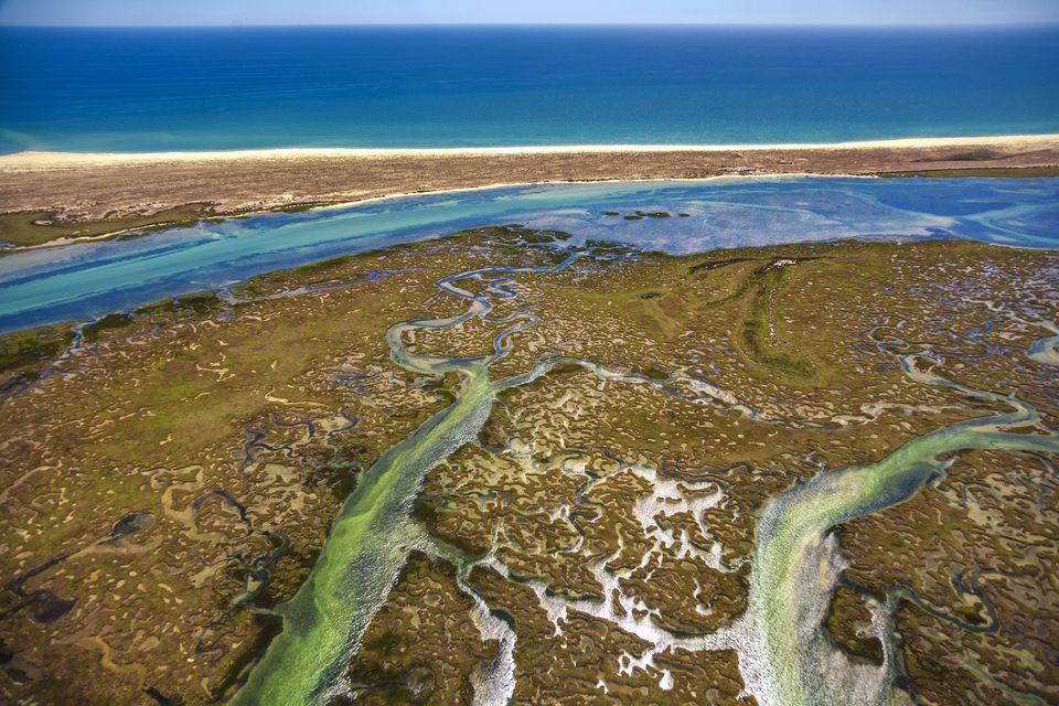 Ria Formosa, natural park in Algarve