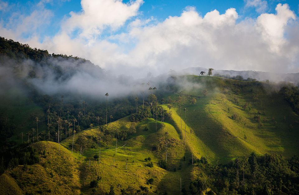 Scenic view of Cocora Valley near Salento in Columbia