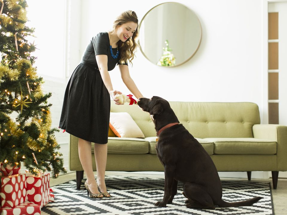 best presents for dogs, dog gifts