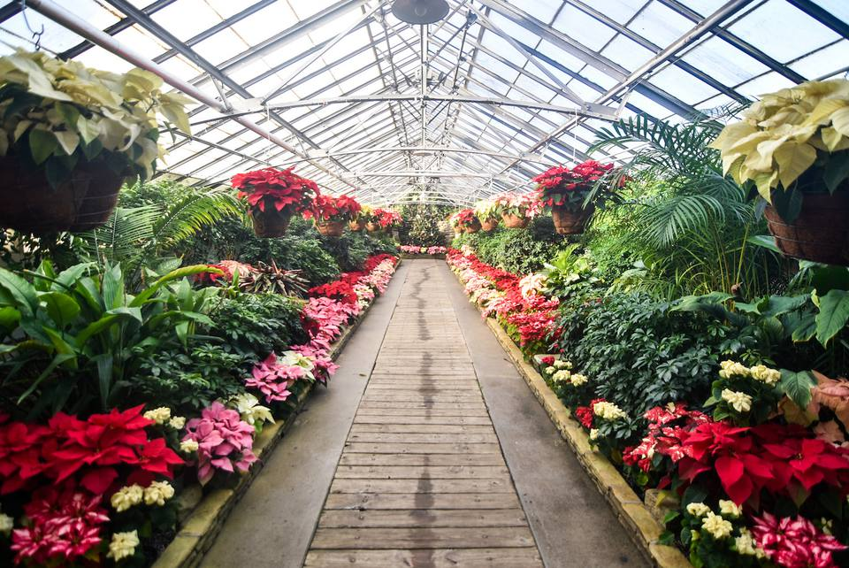 Rockefeller Park Greenhouse