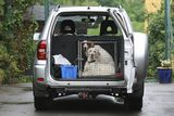 dogs in a crate inside a car...ready to go for a drive, Oslo Norway