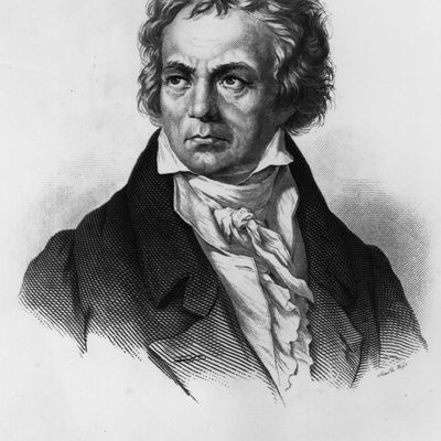 an introduction to the life and rise of ludwig van beethoven Music appreciation outline 4 - part iv the classical period  • ludwig van beethoven  music appreciation outline 4.