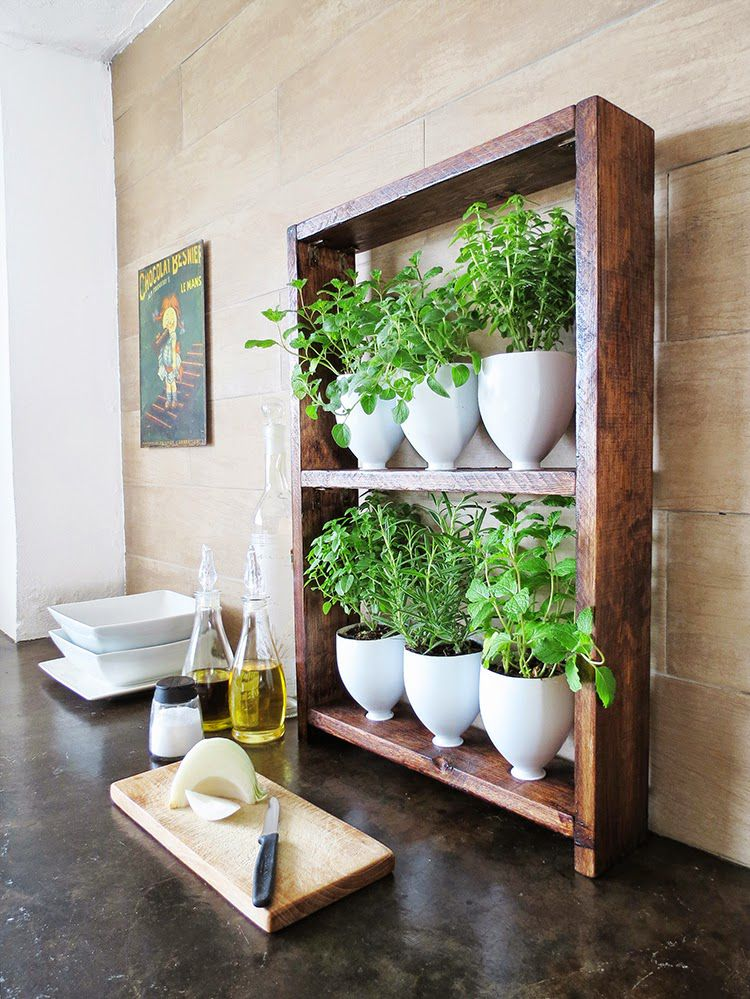 DIY Kitchen Herb Garden