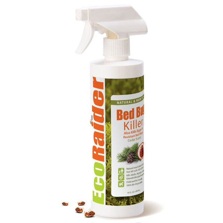 egg bed home bedroom killer kill harris within bug oz spray raid the does bugs