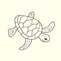 Finish The Sea Turtle