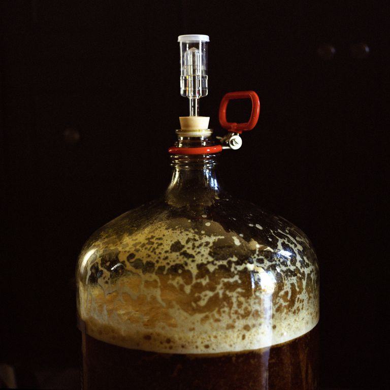Fermentation by yeast in beer