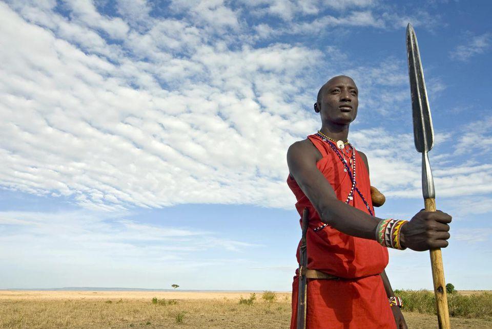 Masai Mara National Reserve, Kenya, East Africa, Africa