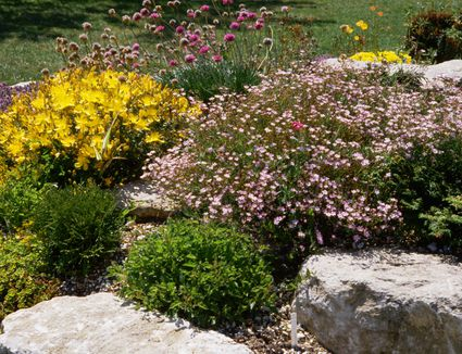 How to build rock gardens photo tutorial how to landscape with rocks landscaping ideas workwithnaturefo