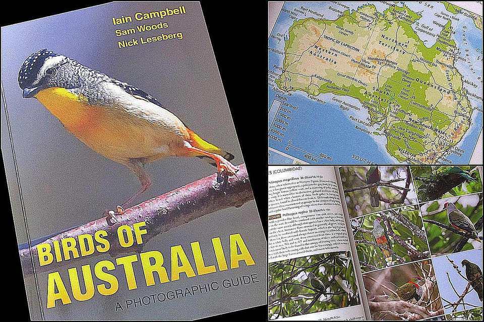 Birds of Australia: A Photographic Guide