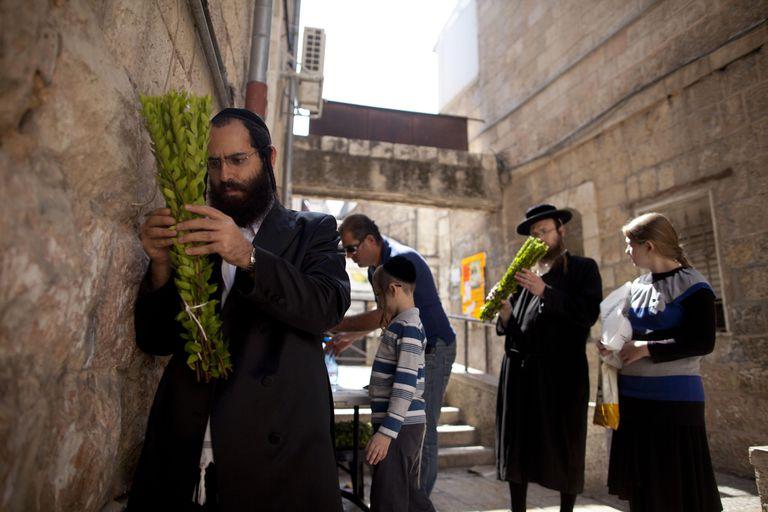 Religious Jews Prepare For Sukkot