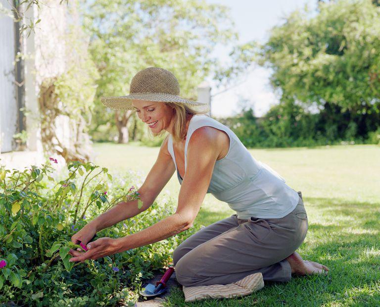 gardening-outdoors-Stuart-O-Sullivan.jpg