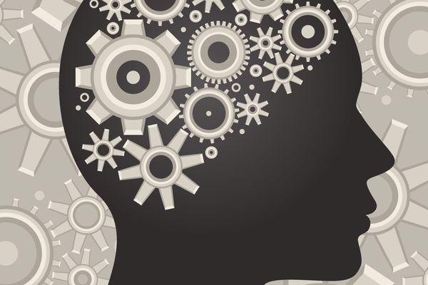 Wheels in a brain