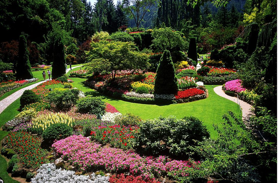 Garden Landscapes Designs Interesting Designing A Garden With Landscape Design Principles Decorating Inspiration