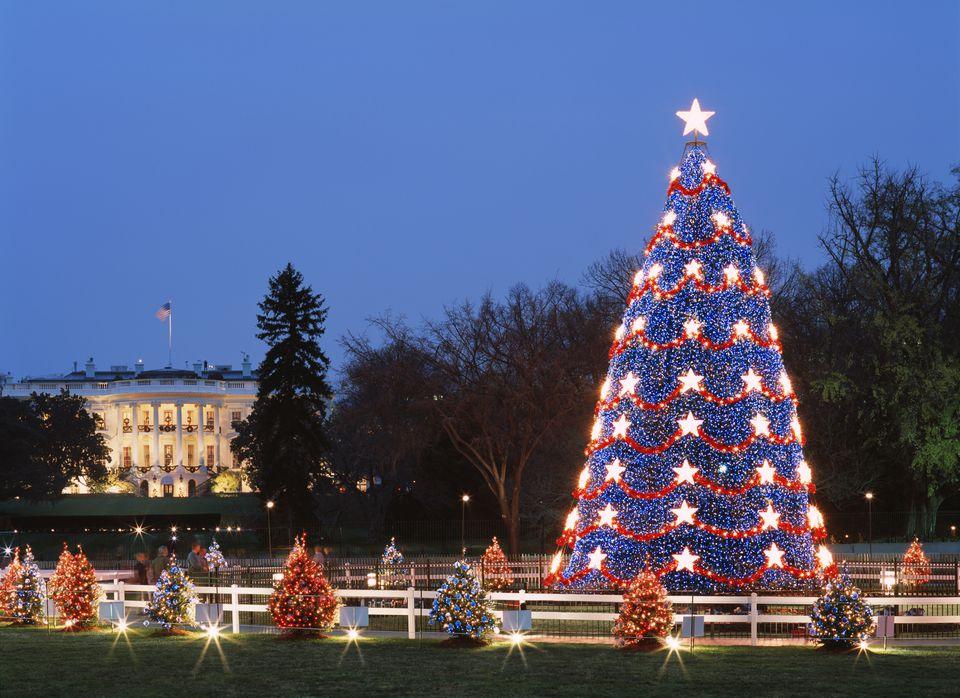 USA, Washington DC, Illuminared Christmas tree with White House in background