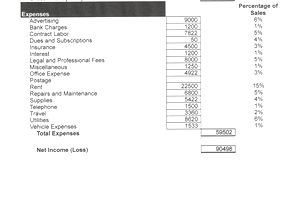 Profit and Loss Statement/Income Statement