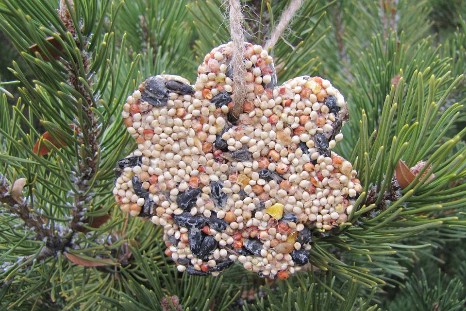 Finished Birdseed Ornament