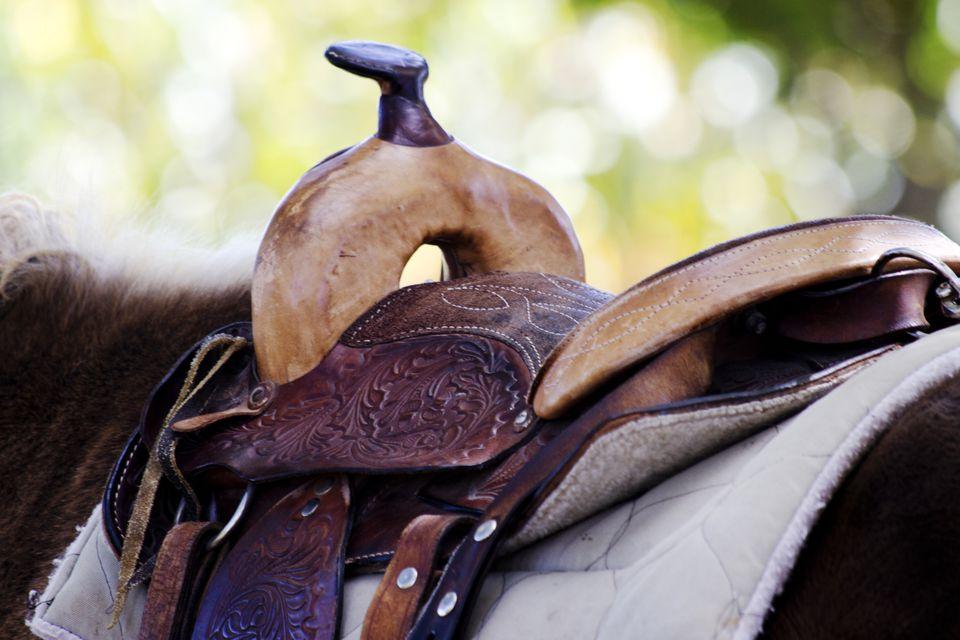 Saddle with pad