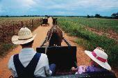 Mennonite farmer and child