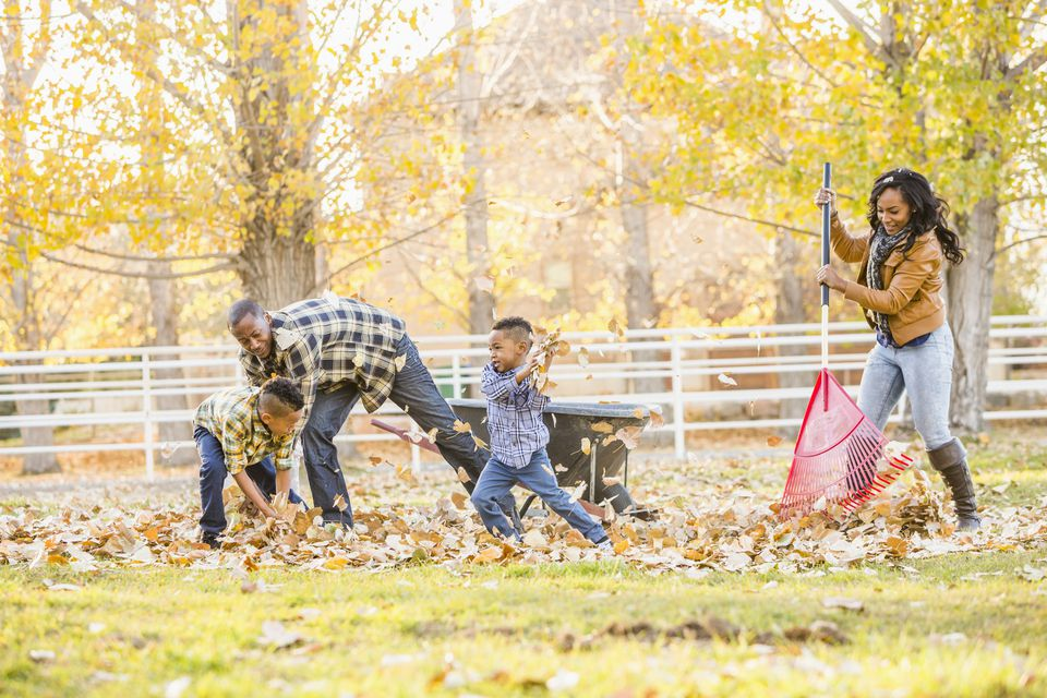 Family raking autumn leaves together