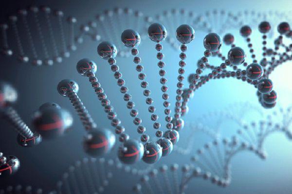 DNA structure, Illustration
