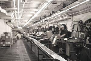 A man working in a factory near a conveyor belt