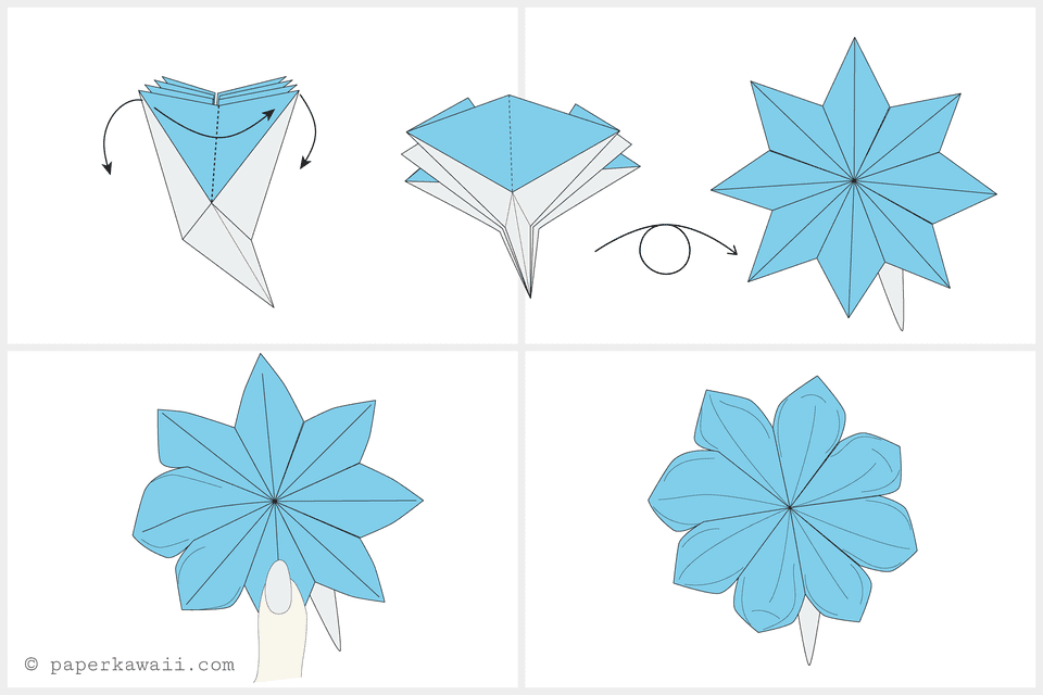 Magnificent Origami Flower Wiring Digital Resources Funapmognl