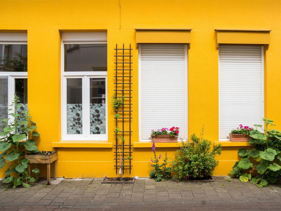 10 DIY Garden Trellises That Cost Less Than $20
