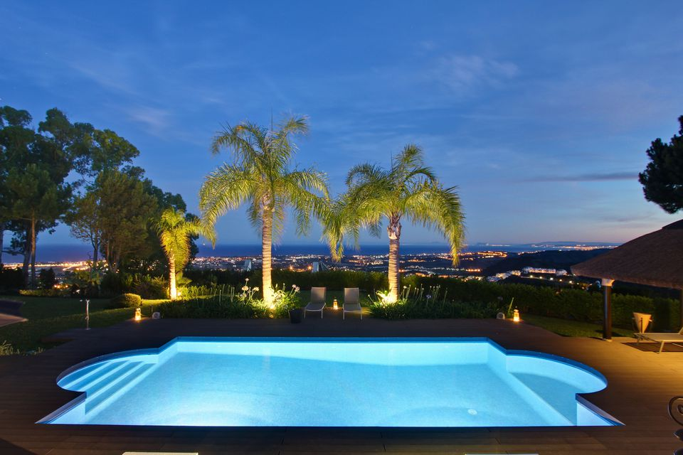 palm trees and pool at night