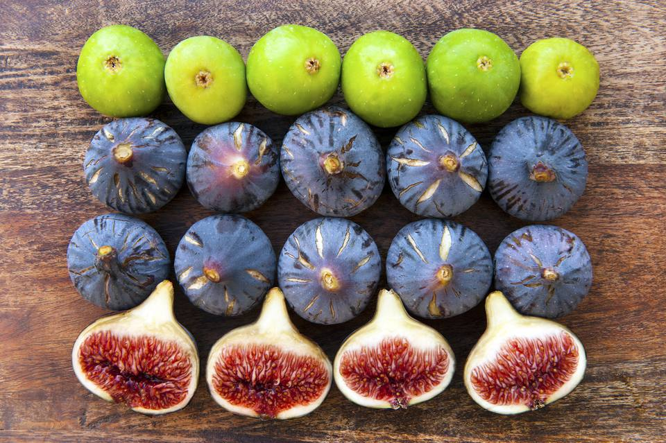 Black Mission and Adriatic Figs